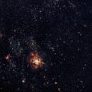 Trantula nbel NGC 2070,                                Stefan Baumgartner