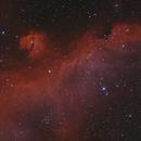 IC 2177 - Seagull Nebula,                                Mike Hislope