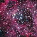 NGC2238_Rosette Nebula (Harp Cluster),                                Richard H