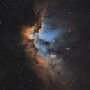 The Wizard Nebula - SHO,                                Teagan Grable