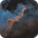 NGC7000 The Cygnus Wall,                                David Wills (Pixe...