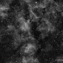 NGC 6914 in Ha,                                Scott