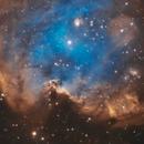 NGC 2174 (Sh 2-252) - Monkey Head Nebula,                                Ara