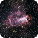 The Omega Nebula (M 17),                                Alex Roberts