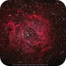 NGC 2244,                                Thomas