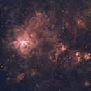 NGC 2070,                                Max