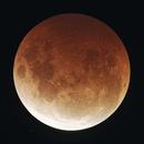 Total Lunar Eclipse, May 2021,                                Peter Pat