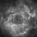 NGC2237 Ha,                                Jesus Magdalena