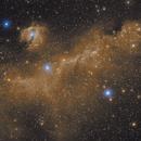 IC 2177 - Seagull Nebula in Monoceros - Ha-RHaGB,                                Ray Caro