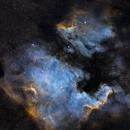 North American and Pelican Nebula,                                Chris Bulik