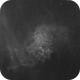 Flaming Star Nebula - IC 405 / Sh2-229 (Ha),                                Falk Schiel