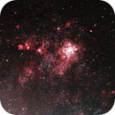 Tarantula Nebula NGC 2070,                                Felipe GB