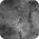 IC 1396 in Hydrogen Alpha,                                Wesley Creech