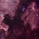 North America and Pelican nebula with small Evoguide 50ED & TSEDPH61 II,                                Doc_HighCo