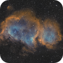 IC 1848 – Soul Nebula,                                Victor Van Puyenbroeck