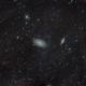 M81 + M82 + IFN,                                Fabian Rodriguez...