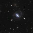 """NGC 4151 """" Eye of Sauron"""" and NGC 4145,                                Vadim Kozatchenko"""