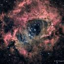The Rosette Nebula,                                Scott