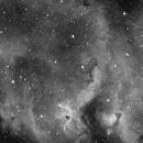 Sharpless 2-199 The Soul Nebula,                                Luís Ramalho