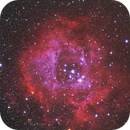 Rosette Nebula in RGB & HA,                                Terry Hancock