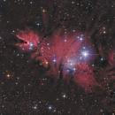 NGC2264 in LRGBHa,                                Peter Folkesson