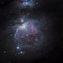 M42 Orion Nebula,                                Erika Lac