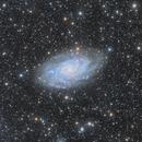 M33 with IFN,                                LAUBING