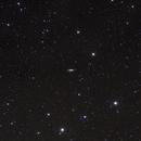 NGC2683 Galaxy in Lynx,                                Jan Curtis