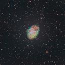 The Crab Nebula (Finally!),                                Jessica