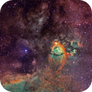 The North Bear Nebula - IC1795 - Hybrid palette - LRGB composition,                                David Lindemann