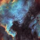 The North America & Pelican Nebulae,                                Nicolas Kizilian