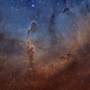 IC 1396 Elephant's Trunk nebula,                                Audrius