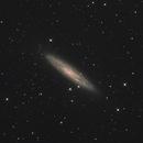 NGC253,                                KAZUHIRO NONOMURA
