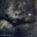 IC1318 - Butterfly Nebula,                                José Fco. del Agu...