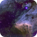 Pelican Nebula SHO,                                Eric Cauble