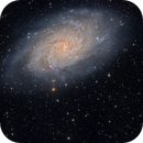 The Final Night of Four After Comet 156/P Slid Past M33,                                Dan Bartlett