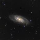 NGC 2903 in Leo,                                Aurelio55