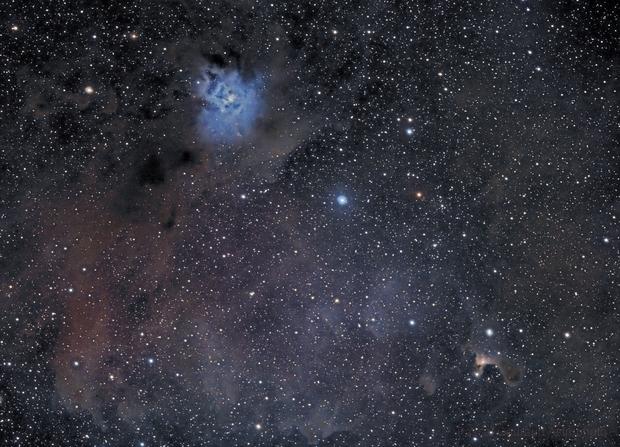 Iris and Ghost Nebula (NGC7023 & VDB141),                                Pascal Gouraud