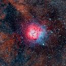 Nebulosa Trífida - Messier 20,                                Hugo Landolfi
