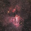 M17 Nebulosa Omega Ha-RGB,                                Alessandro Speranza