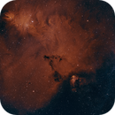 NGC 2264 - The Cone Nebula,                                AllAboutRefractors