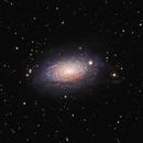 M63 Sunflower Galaxy,                                Mark Kuehner