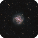 Southern Pinwheel Galaxy on LP... Learning a bit more,                                Diego Colonnello