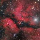 IC 1318 - Gamma Cygni Nebula wide field,                                Markus Blauensteiner