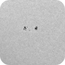 Sunspots in white light, 2/8/2018,                                Patrick Hsieh