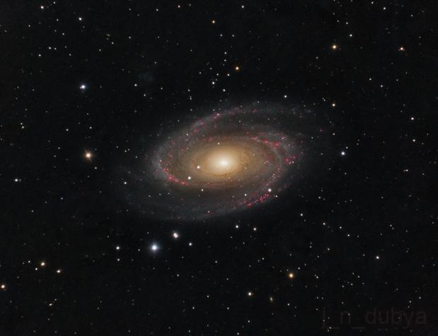 M81 - Bode's Nebula,                                Josh Woodward