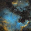 NGC7000&IC5070,                                LAUBING