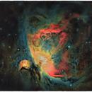 M 42 Orion nebula,                                floreone