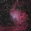 IC 405,                                Matteo Quadri