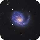 M99 in Coma Berenices,                                Jim Thommes